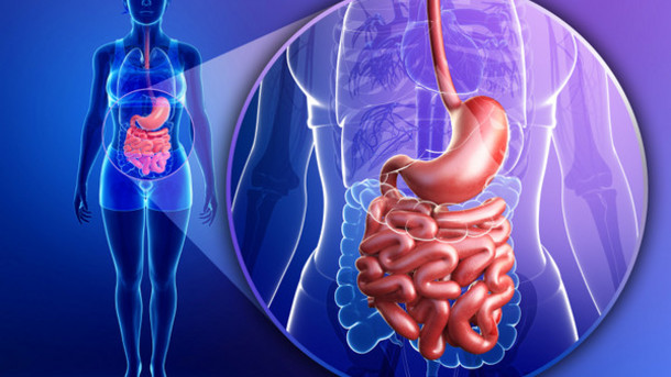 whats-the-connection-between-probiotics-and-digestive-health30.jpeg